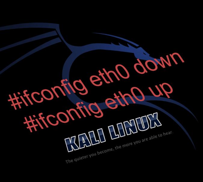 How ot do Kali Linux network configuration