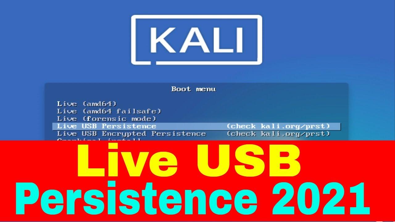kali linux live usb persistence