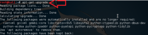 Upgrade Kali Linux