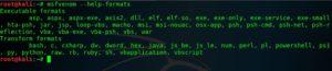 fileformate in msfvenom