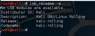 check Kali Linux version