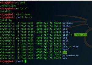 Kali linux commands basic 2