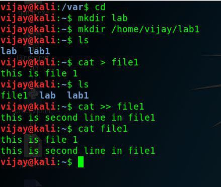 Kali linux commands basic use cat