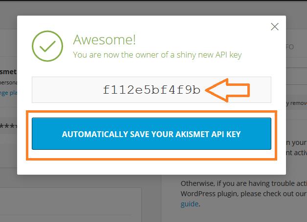 Activate Akismet anti spam wordpress plugin with API key