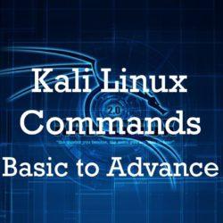 kali linux commands basic to advance