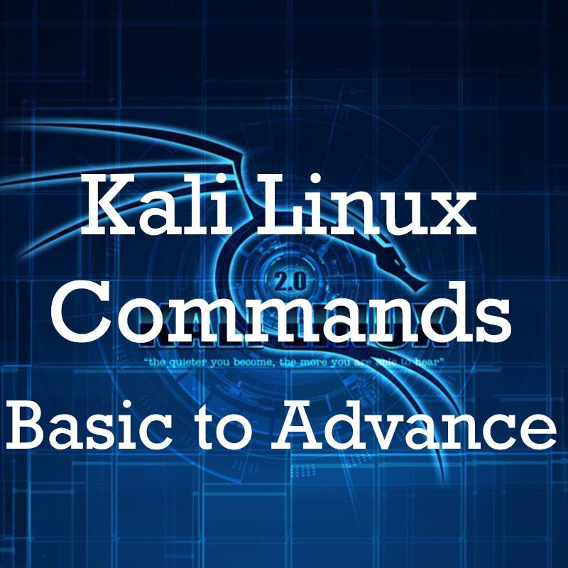 kali linux commands basic to advance