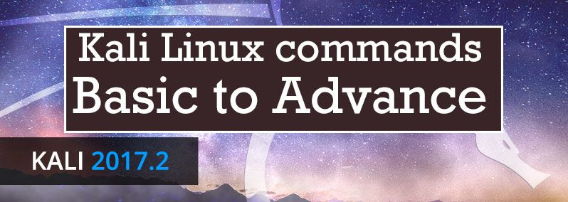 kali linux commands basic to advance 2