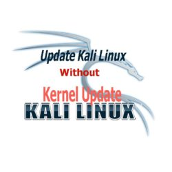 How to skip kernel update in Kali Linux?