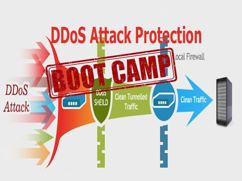 ddos attack protection bootcamp