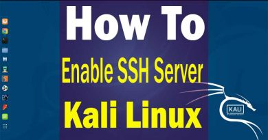 how-to-enable-ssh-kali-linux