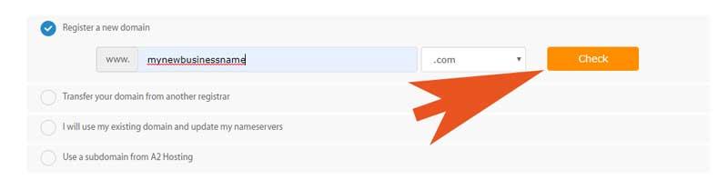 6-domain-name-check
