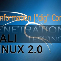 Gather information using dig command in Kali Linux
