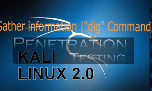"Gather information using ""dig"" command in Kali Linux"
