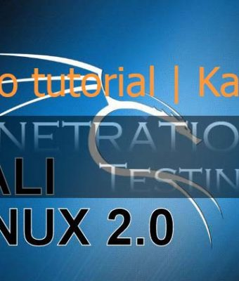 How to Use Maltego Kali Linux – beginner's Tutorial