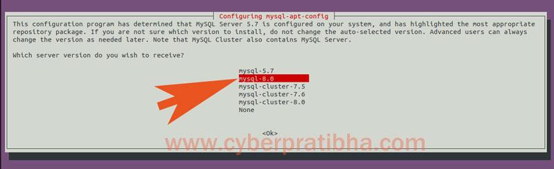 14-select-mysql-versioin