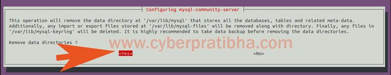 18-remove-data-directory