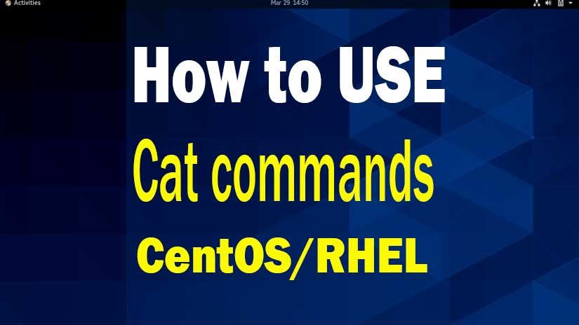 The-basic-syntax-of-cat-command-in-Linux-image