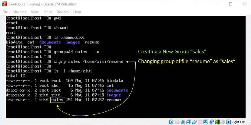 Linux File Permission - Create a Group and Change Ownership