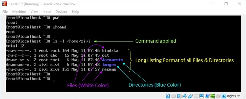 Linux File Permission - How to View Long Listing Format