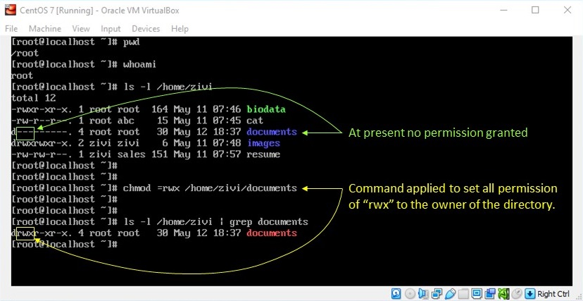 Linux File Permission - Setting Permission by Force