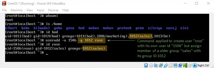 adduser Command in Linux - Creating User and Assigning a Group with Group ID