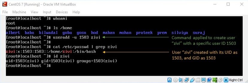 adduser Command in Linux - Creating User with Custom User ID