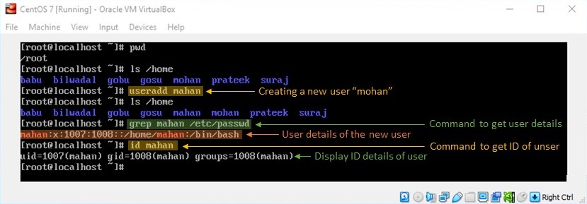 adduser Command in Linux - Creating a New User with useradd Command